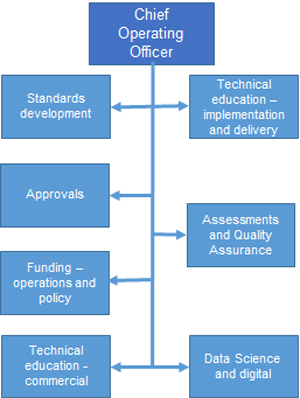 Chief operating officer reporting structure