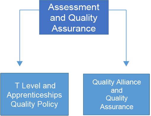 Chart showing that the assessment and quality assurance team consists of the T Level and apprenticeship quality policy and quality alliance and quality assurance